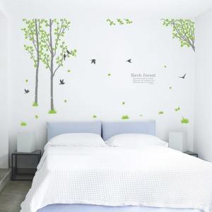 인테리어 포인트스티커 벽지 IP201-자작나무숲