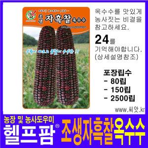 헬프팜 자색 찰옥수수 2500 립 씨앗 제일종묘 종자