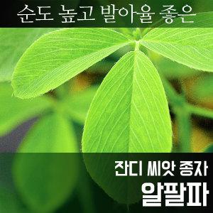 잔디 알팔파_씨앗_1kg