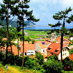 |경남| 보물섬 남해 무박여행/은모래비치/보리암/독일마을/다랭이마을/멸치쌈밥 제공/국내여행/서울경기出