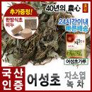 2018년 햇 어성초300g/어성초가루/자소엽/녹차/(국산)