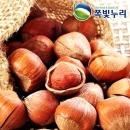 개암 껍질 헤이즐넛 500g 프리미엄너트