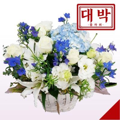 화이트블루 꽃바구니 생일 기념일 출산 병문안 꽃배달