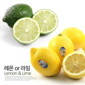 (싱싱한 생과) 미국산 레몬 / 16kg 150과전후 대용량
