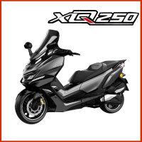 XQ250 2019년식 신형 대림 스쿠터 오토바이 헬멧증정