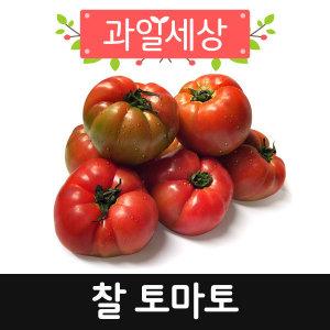 정품.토마토10kg/맛 있는 찰 토마토