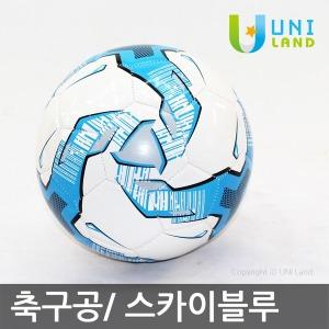 축구공/ 스카이블루/표준사이즈 5호/볼 에어펌프/Ball