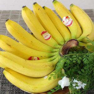 바나나(6~8손)13kg 한박스 자연대로팜웨이