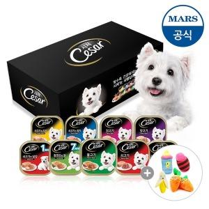 시저 강아지캔 18개+장난감인형(증정)