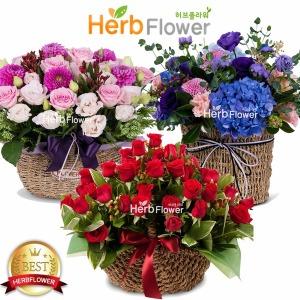 예쁜장미꽃바구니 생일선물 장미꽃도매 당일꽃배달