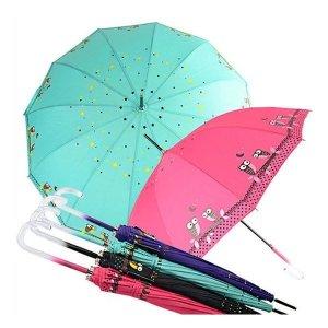 부엉이 자동 장우산/장우산/자동우산/패션우산
