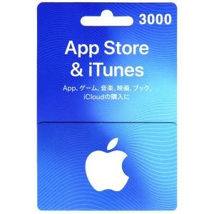 일본 앱스토어 아이튠즈 기프트카드 3000엔