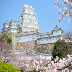 오사카4일  절경+역사+미식/온천호텔2박  오사카 교토 와카야마 시라하마