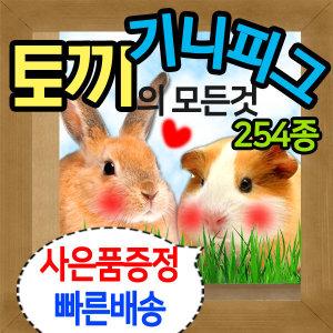 토끼용품/기니피그용품/친칠라용품/사료/건초/간식