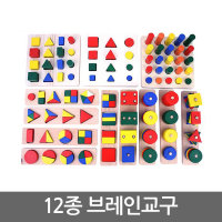 브레인 교구 12종/원목 블록/도형 쌓기/맞추기/끼우기