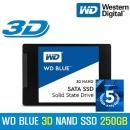 WD BLUE 3D 250G SSD PC 노트북 하드