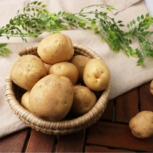 국내산 포슬포슬 햇 감자 수미감자 / 남작감자 5kg