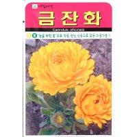 금잔화꽃씨앗 50립  (18년포장)