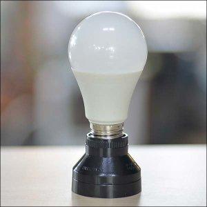 B631/주광색LED전구/식물LED/LED전구/조명/전구