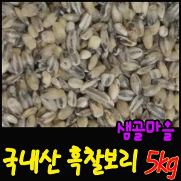 샘골마을 2019년산 흑찰보리5kg 검정보리/무료배송