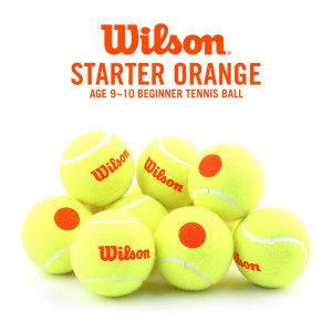 윌슨 오렌지볼 테니스공 유소년 스타터볼 50프로