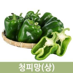 국내 청피망 (상) 10kg  두리반농산