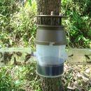 말벌포획기 말벌 장수말벌 포획 천연성분 유인액