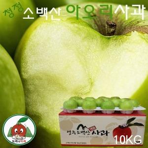 청정 소백산 아오리사과 10kg(48과내외) 산지직송