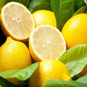 선키스트 레몬100과 1Box(특대과140g옵션)