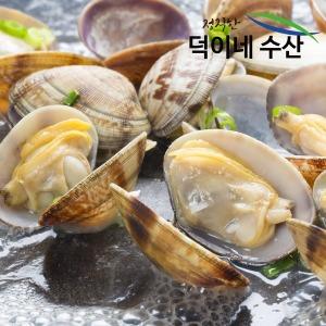 100% 국내산 남해안 왕 바지락 1K 특가판매