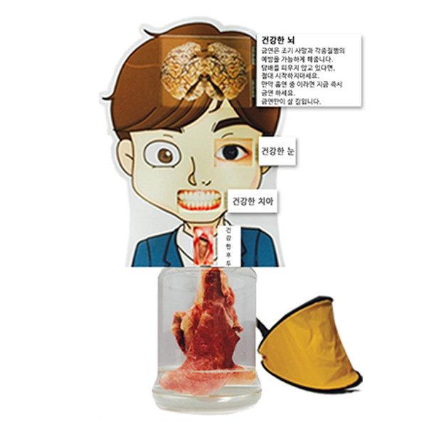 폐비교모형-정상폐(남자캐릭터) 금연교육용품