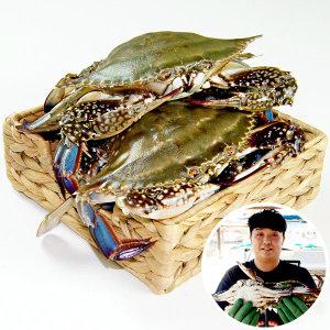 태안_산지직송/ 당일조업 활꽃게 3kg (9-15마리)