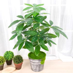 인조나무 조화나무 인테리어조화 화분 몬스테라 야자