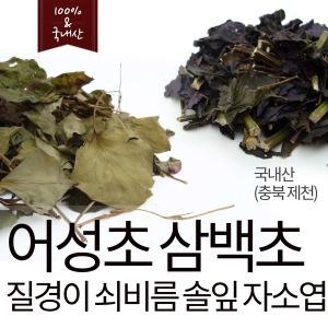 어성초 삼백초 질경이 솔잎 연잎 쇠비름 자소엽