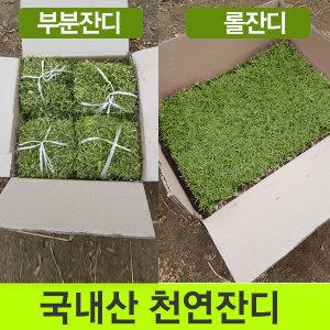 잔디/천연잔디/20장1박스/롤잔디2장/박스/무료배송