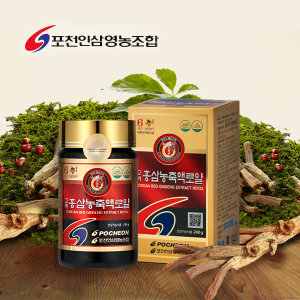 홍삼농축액로얄240g/6년근홍삼/홍삼/홍삼정