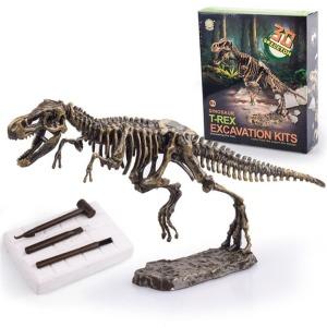 공룡화석 발굴키트(대)/관찰 실험 수업