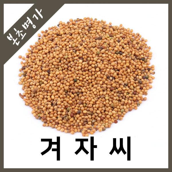 본초명가/백개자/겨자/겨자씨앗/겨자씨/인도산/600g