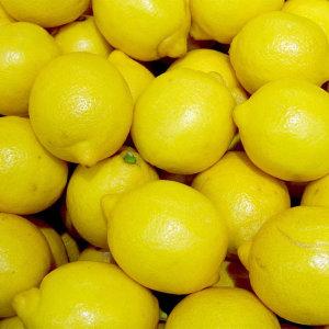 신선한 팬시 레몬 140과 17kg 특품
