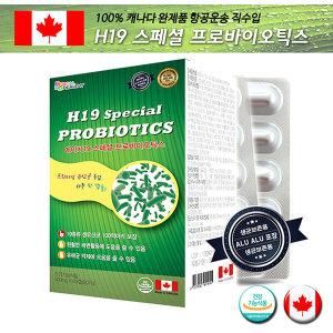 H19 스페셜 프로바이오틱스 2개월분 60캡슐