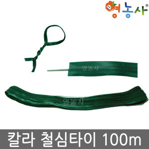 칼라 철심타이/ 100m 녹색 철사 끈 식물끈 농사끈