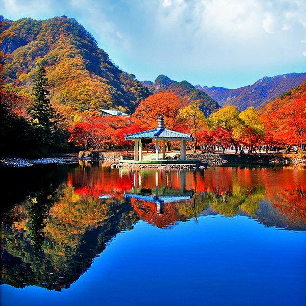 |전북| 정읍 내장산 내장사 단풍트레킹(원적암/우화정) 당일여행 / 국내여행/가을단풍여행/서울경기出