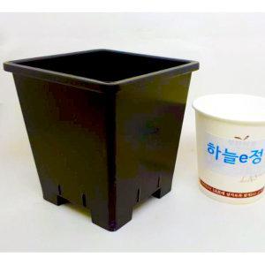 10cm 플분2호 4개 원예용플분 플라스틱화분 검정