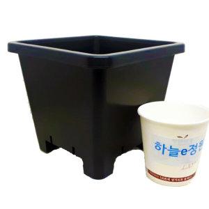 15cm플분 4호1box(120개) 플분도매 플라스틱화분