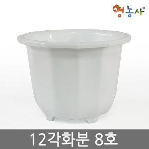 12각화분 8호 /플라스틱화분 인테리어 분갈이