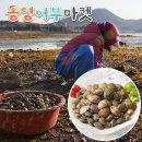 어머님들이 당일 채취한 통영(자연산) 바지락 2kg