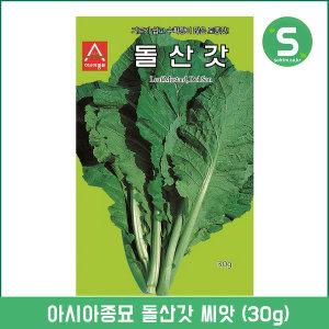 돌산갓씨앗 30g 갓씨앗 쌈채소 잎채소 민속채소