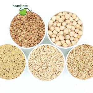 귀리 쌀눈 아마란스 퀴노아 렌틸콩 병아리콩 홍국쌀