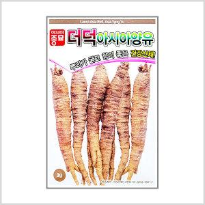더덕씨앗 3g 아시아양유더덕 민속채소 건강채소