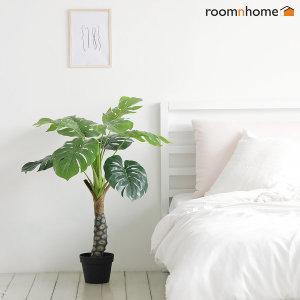 몬스테라 조화나무 홈데코 인테리어 인조나무